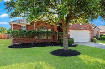 Tomball Single Family Home For Sale: 19210 Oldwick Brook Drive