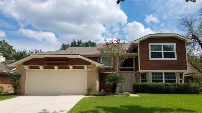 Sugar Land Single Family Home For Sale: 2207 Brook View Lane