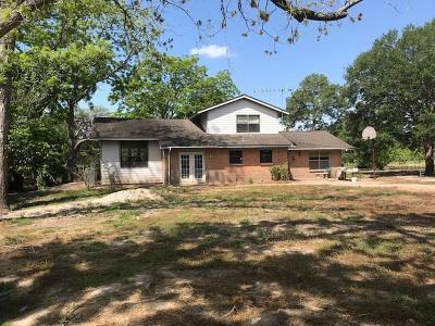 Brazoria Single Family Home For Sale: 2941 County Road 471