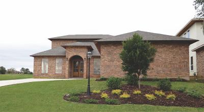 Montgomery Single Family Home For Sale: 155 Waterford Way