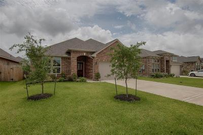 Dickinson Single Family Home For Sale: 247 Dale Ridge Lane