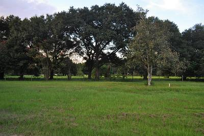Tomball Farm & Ranch For Sale: 21106 Rosehill Church Road