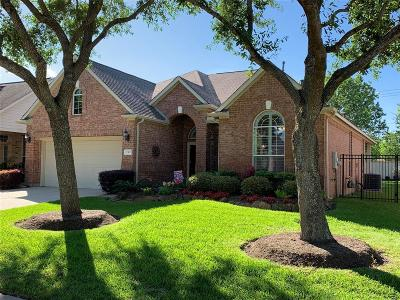 Pearland Single Family Home For Sale: 2312 S Venice Drive