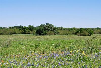 Lavaca County Country Home/Acreage For Sale: Tract 4 Cr 322