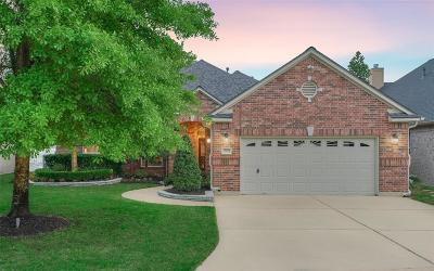 Willis Single Family Home For Sale: 13625 Lakeside Place Drive