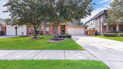 Katy Single Family Home For Sale: 28119 Everett Knolls Drive