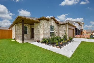 Texas City Single Family Home For Sale: 12515 Jetty Cove Drive