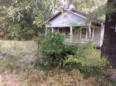 San Jacinto County Single Family Home For Sale: 315 Black Branch Road