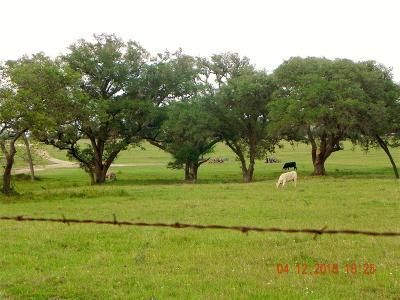Lavaca County Farm & Ranch For Sale: 00 County Road 380