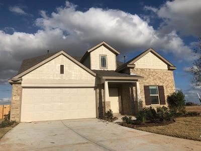 Katy Single Family Home For Sale: 3922 Marble Vista Way