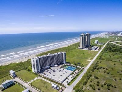 Galveston Condo/Townhouse For Sale: 1401 E Beach Drive E #608