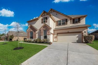 Tomball Single Family Home For Sale: 22718 Wilbur Lane