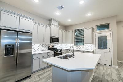 Montgomery Single Family Home For Sale: 246 Biltmore Loop