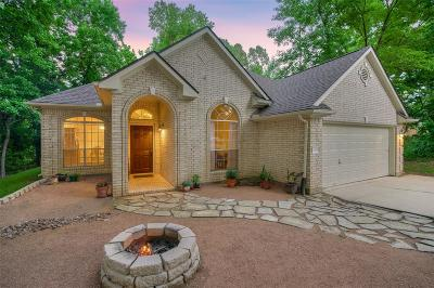 Montgomery Single Family Home For Sale: 3818 Copper Mountain