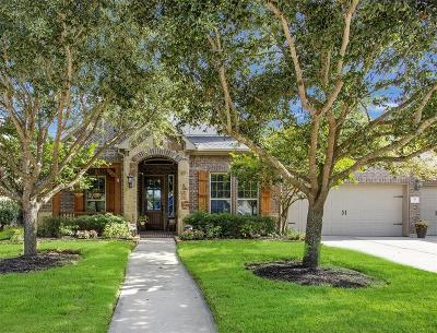 Katy Single Family Home For Sale: 38 Azure Lake Court