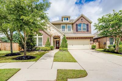 Katy Single Family Home For Sale: 4838 Ashley Hope Drive