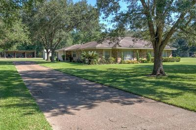 New Caney Single Family Home For Sale: 23191 Brook Forest Road