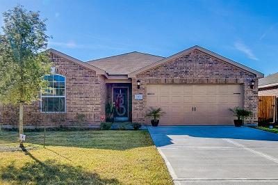 La Marque Single Family Home For Sale: 313 Hawks View Drive