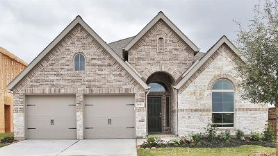 Pearland Single Family Home For Sale: 13510 Mason Canyon Lane