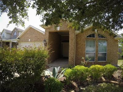 Houston Single Family Home For Sale: 16202 Darrian Lane