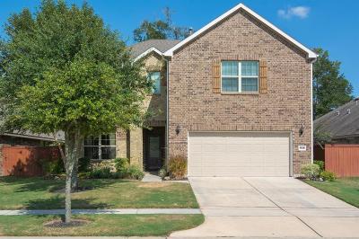 Porter Single Family Home For Sale: 4528 Argonne Woods Drive