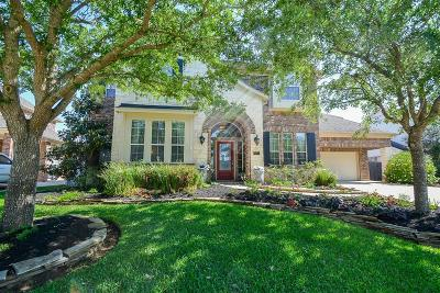 Sugar Land Single Family Home For Sale: 7711 Bayou Green Lane
