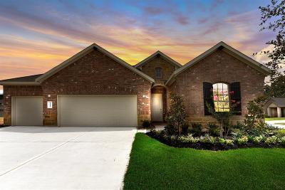 Tomball Single Family Home For Sale: 11119 Longleaf Ridge Drive