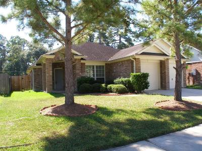 Spring Single Family Home For Sale: 330 Wild Bird Drive
