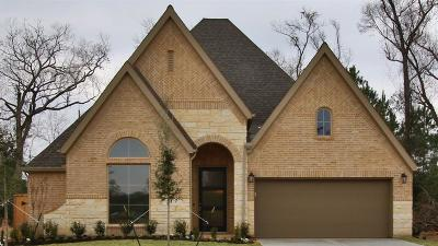 New Caney Single Family Home For Sale: 23637 Sage Villa Drive