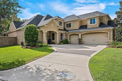 Houston Single Family Home For Sale: 1307 Royal Sands Lane
