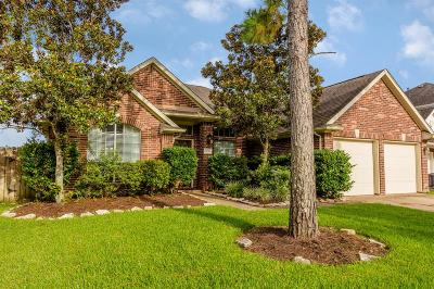 Pearland Single Family Home For Sale: 3235 Braesview Drive