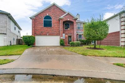 Houston Single Family Home For Sale: 5807 Lundwood Lane