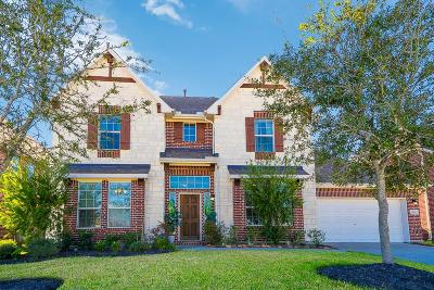 Friendswood Single Family Home For Sale: 1103 Hickory Terrace