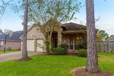 Pearland Single Family Home For Sale: 3518 Brandemere Drive