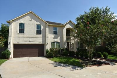 Fort Bend County Single Family Home For Sale: 3 Apple Branch Court