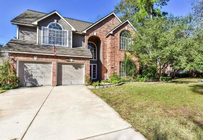 Galveston County, Harris County Single Family Home For Sale: 5019 Greenriver Valley Drive