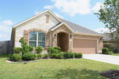 League City Single Family Home For Sale: 4805 Loures Lane
