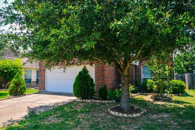 Single Family Home For Sale: 3503 Clipper Winds Way