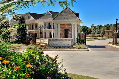The Woodlands Single Family Home For Sale: 25107 Devlin Creek