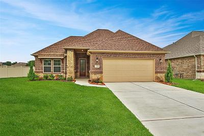 Conroe Single Family Home For Sale: 12218 Forest Villas Lane