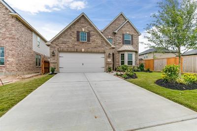 Fulshear Single Family Home For Sale: 28319 Calm Brook Lane