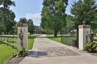 Tomball Single Family Home For Sale: 10611 Spell Road