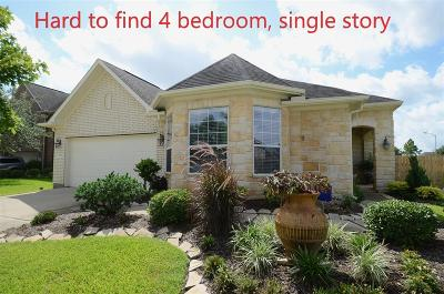 Katy Single Family Home For Sale: 1702 Dutton Point Court