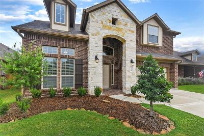 Fort Bend County Single Family Home For Sale: 24010 Amaranto Lane