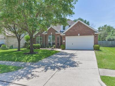 Katy Single Family Home For Sale: 2210 Blue Water Bay Drive
