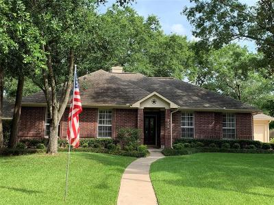 Dickinson Single Family Home For Sale: 713 Sherwood Forest Drive