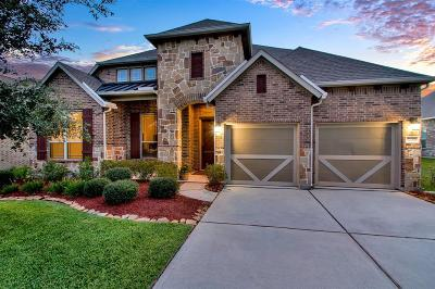 Tomball Single Family Home For Sale: 22307 Pine Tree Drive