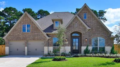 Tomball Single Family Home For Sale: 21434 Rose Loch Lane