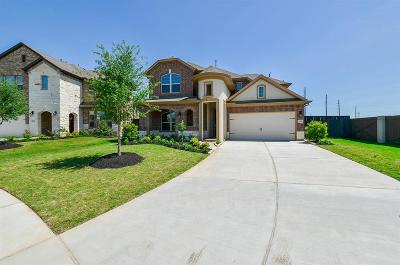 Fort Bend County Single Family Home For Sale: 910 Georgia Blue Drive
