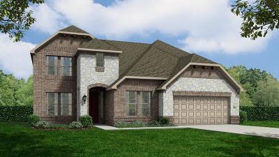 Rosenberg Single Family Home For Sale: 8239 Longear Lane